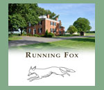 Running Fox in Chestertown, MD