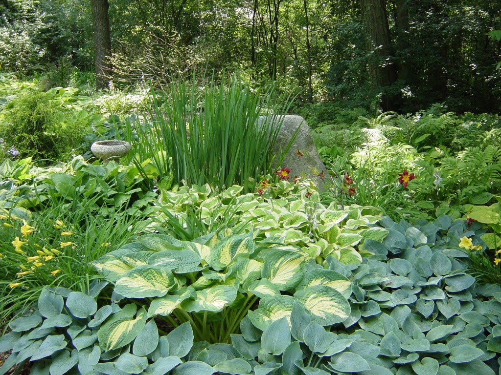 Kingstown Farm Home and Garden Horticulture Meeting: Shade Gardening