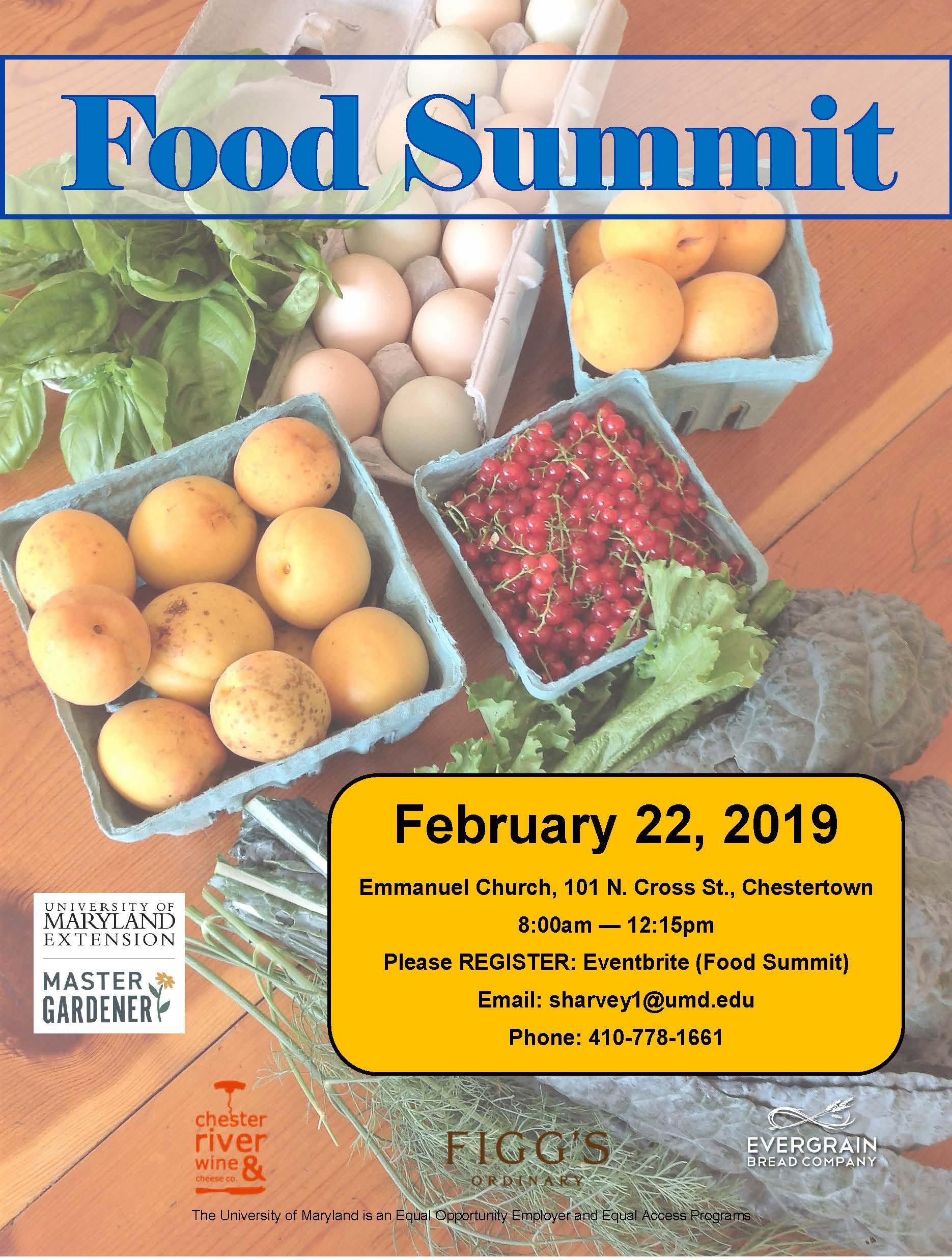 Food Summit, Kent County