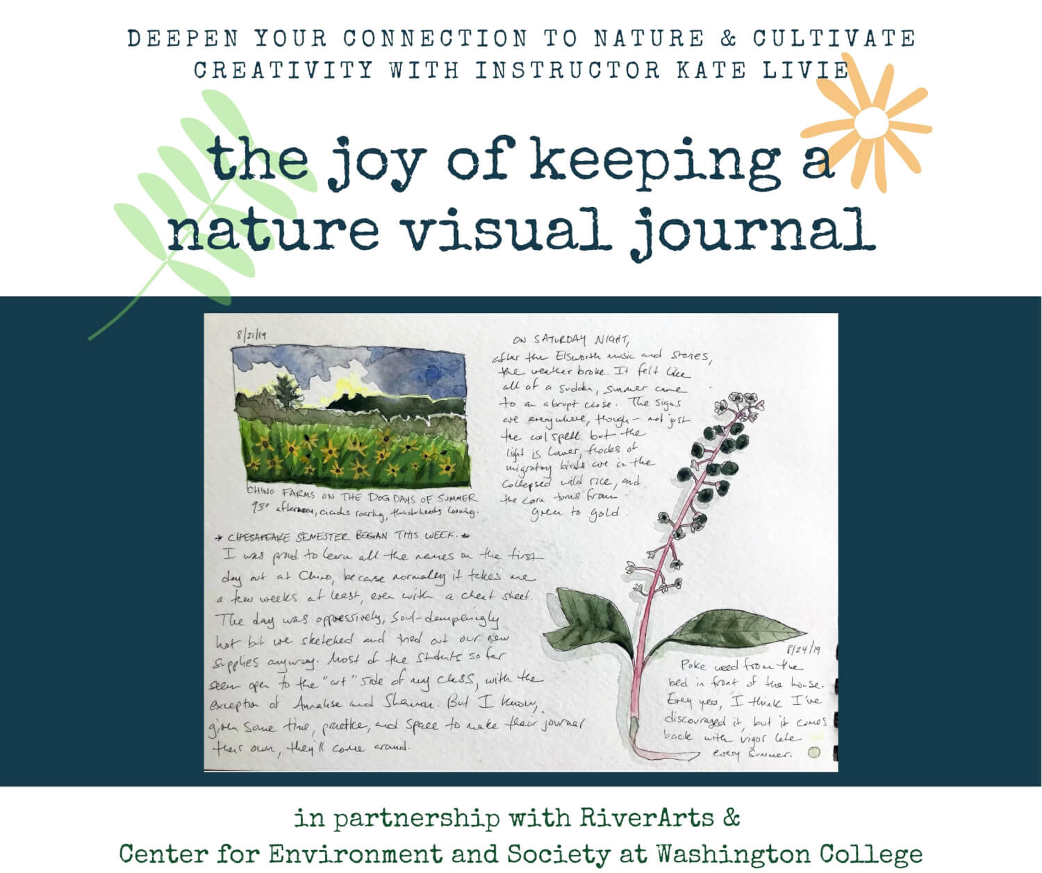 The Joy of Visual Journaling in Nature with Kate Livie