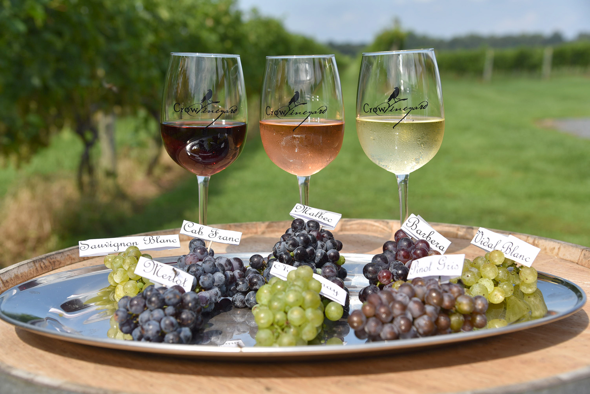 Wine Seminar Series 3: Grapes to Glass
