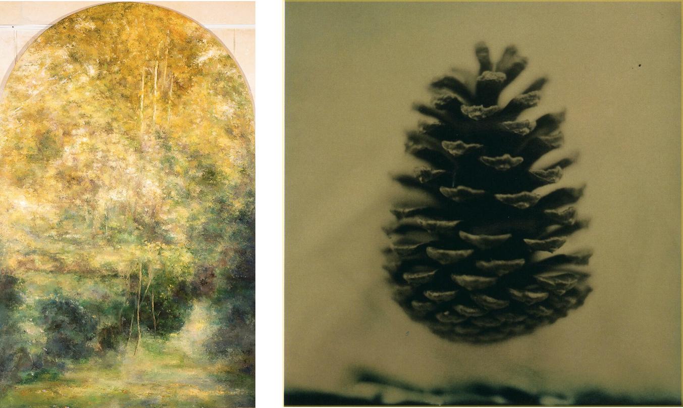 MassoniArt presents TREES