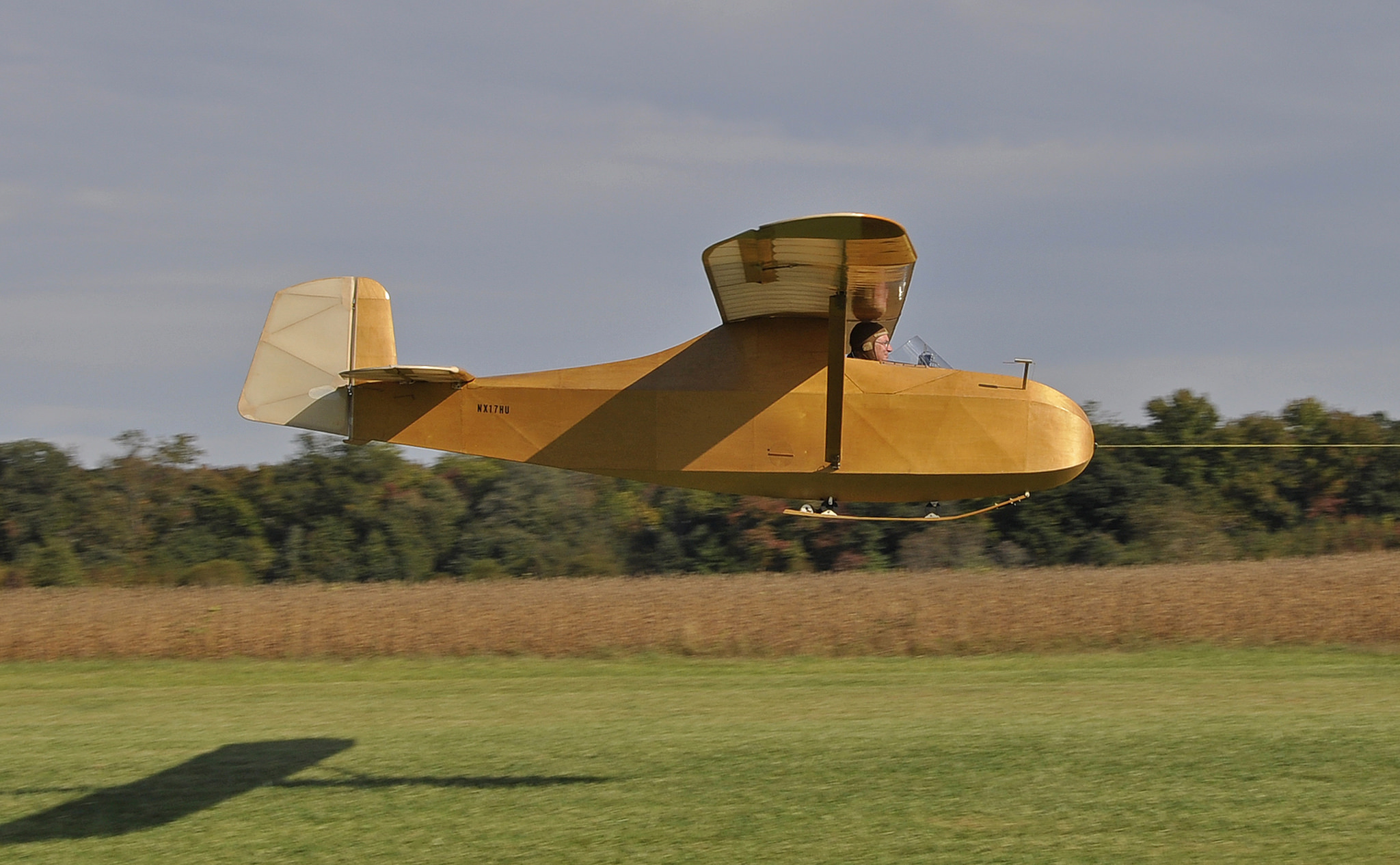 Vintage Sailplane Rendezvous at Massey Aerodrome
