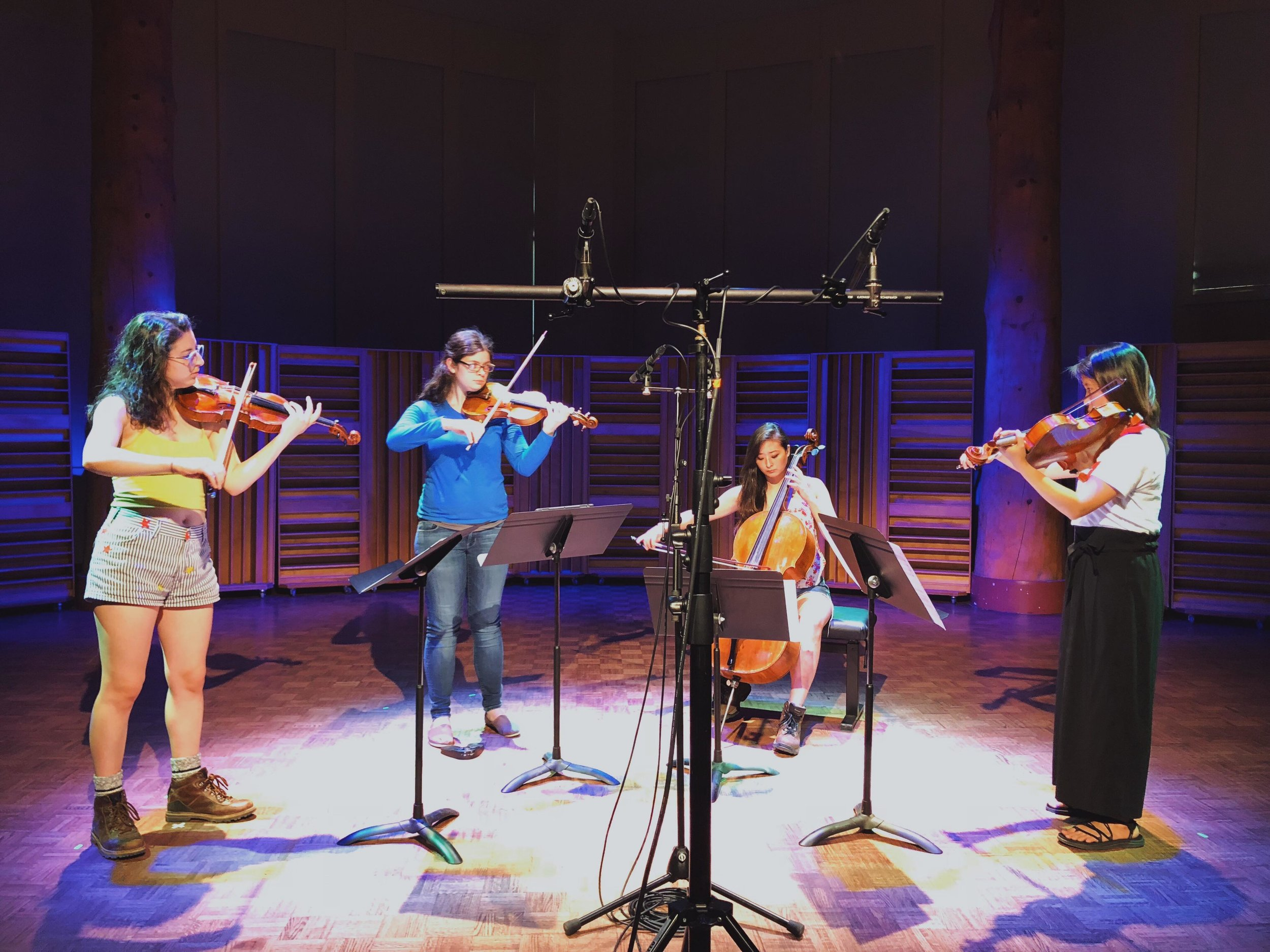 The Hedgelawn Series presents the Bergamot String Quartet