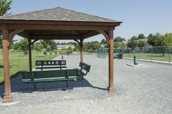 Chestertown Dog Park